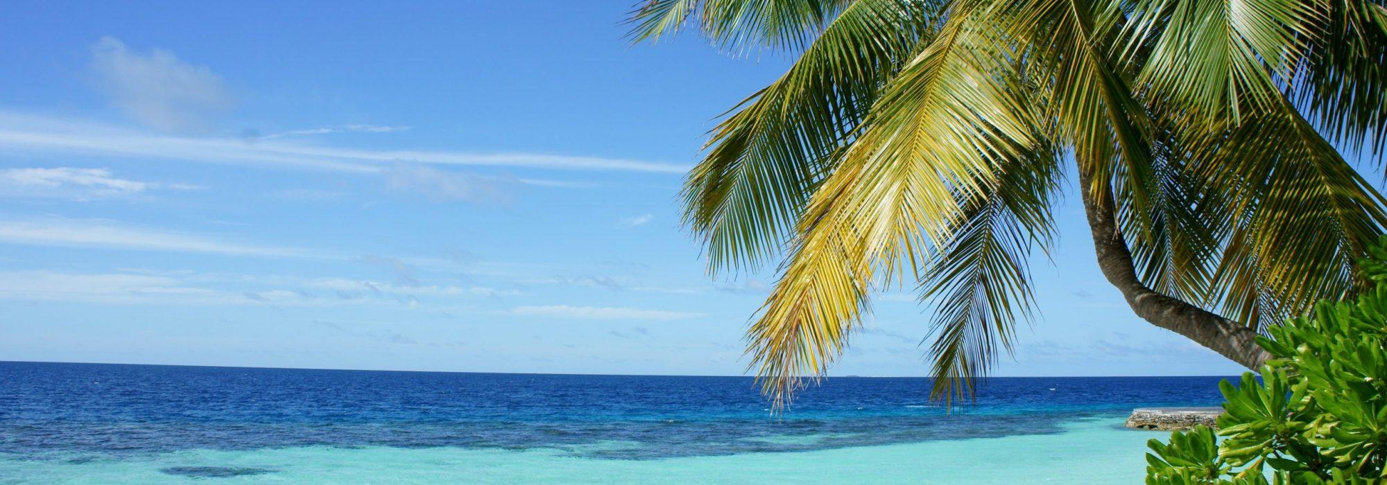 maldivespedro-monteiro-503606-unsplash